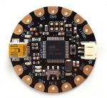 Flora microcontroller